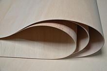 Sklejka elastyczna 5 mm (1220x2440) słoje poprzeczne Fuma wodoodporna