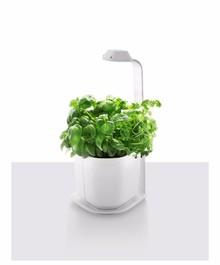 Ogród domowy Genie to energooszczędne, inteligentne i ekologiczne urządzenie . Genie wykonany jest z trwałego materiału przy wykorzystaniu innowacyjnych...