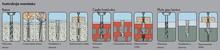 Złączki Montażowe Dybel (Kołek) fi.6mm Koszulka SHARK 6x36mm + Wkręt 4x55mm 1kpl - Würth