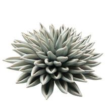 Materiał: ceramika Wymiary: D15xH7,5cm Waga: 530gr