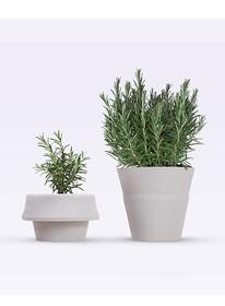 Fold to doniczka, który rośnie wraz z rośliną. Włoski projektant Emanuele Pizzolorusso zaprojektował elastyczną doniczkę, która może podwoić...