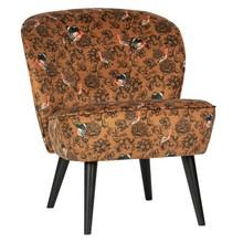 Fotel SARA velvet - wzór feniks