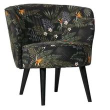 Fotel ELISE velvet - multikolor